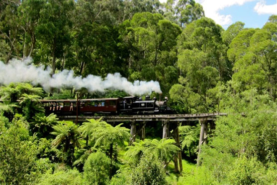Puffing Billy 1